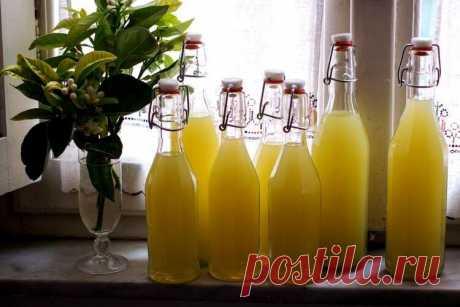 Лимончелло - готовим итальянский ликер в домашних условиях Классический домашний лимончелло по итальянскому рецепту из Сорренто. Пошаговая технология с фото, тонкая подгонка вкуса, варианты переработки лимонов.