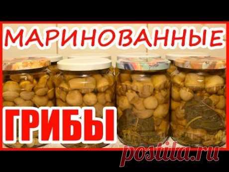 ГРИБЫ МАРИНОВАННЫЕ!!! Рецепт на зиму! - YouTube