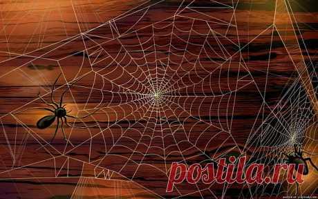 Нарисованные пауки картинки