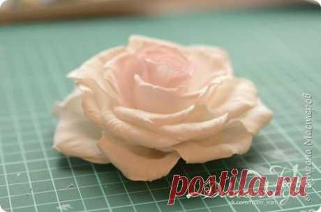 (1) Gallery.ru / Фото #1 - Мастер-класс: Распустившаяся роза Paris - Vladikana