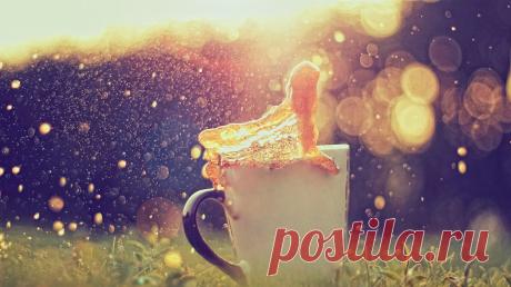Простые маленькие ежедневные ритуалы могут изменить жизнь гораздо сильнее, чем громкие обещания. Мы собрали для вас 11 простых привычек, которые сделают ваш день прожитым не зря —