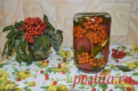 Помидоры с рябиной. Ингредиенты: помидоры, рябина черноплодная, чеснок