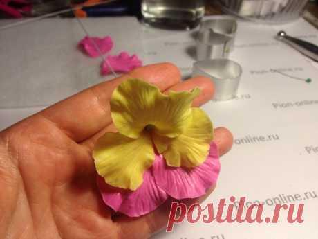 Анютины Глазки « Керамическая флористика. Цветы из холодного фарфора. Уроки и мастер-классы