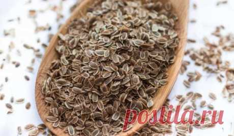 To forget about pressure it is necessary to take a handful of seeds of fennel. In a week you will be healthy! - CELEBNIK. RU