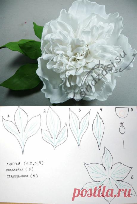 Las flores de foamirana por las manos: los modelos, el patrón y el esquema