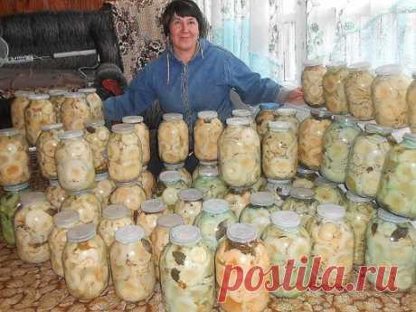 10 ЗАГОТОВОК ИЗ ГРИБОВ   1. Засолка грибов - холодный способ   Грибы (рыжики, черные и белые грузди, волнушки, сыроежки) - 1 кг  Соль - 100 г  Смородина - 10–12 листьев  Вишня - 5–6 листиков  Хрен - 2 листа  Укроп - 2 зонтика  Лавровый лист - 2–3 шт.  Перец горошком - по вкусу  Чеснок - по вкусу   Грузди, волнушки или сыроежки вымыть и залить холодной водой на 5–6 ч. (Рыжики не вымачивают, а только промывают). На дно деревянной или керамической посуды насыпать слой соли, п...