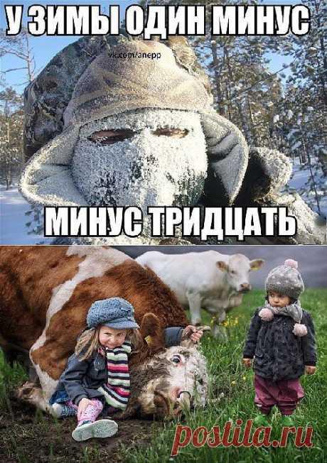 Фото приколы :)