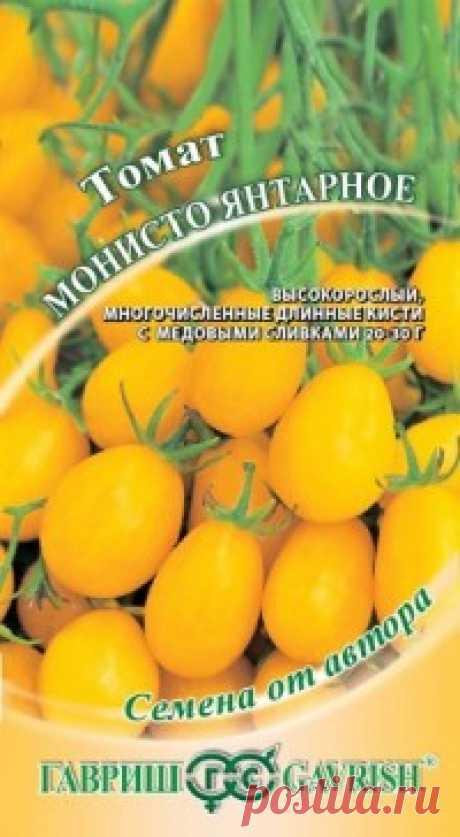 """Семена. Томат """"Монисто янтарное"""" (вес: 0,1 г) Всхожесть: 66%. Характерная особенность сортов группы Монисто — это невероятно обильное и дружное плодоношение. В эту пору растение очень декоративно — небольшие сахарные сливки в многочисленных длинных кистях по 14-16 плодов плотно покрывают высокорослый куст. Растение индетерминантное..."""