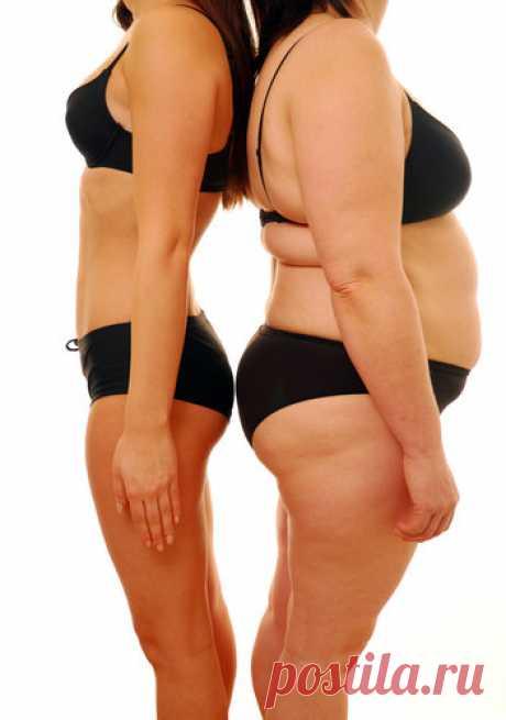 Как решить проблему лишнего веса без диет? | Психолог