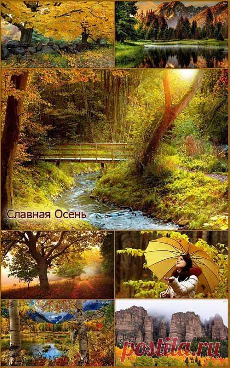 HD обои - Природа осень » PHOTOCELEBS.ru - Фото Знаменитостей и обои для рабочего стола