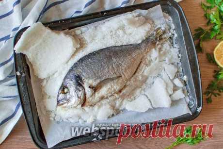 Дорада в соли рецепт с фото, как приготовить дораду запеченную в соли в духовке на Webspoon.ru