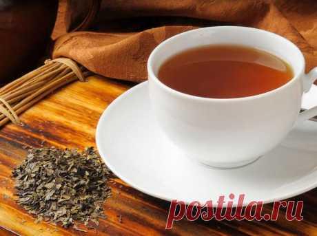 Монастырский чай: правда или развод Монастырский чай: правда или развод Монастырский чай — современный напиток, вокруг которого ходит много разговоров. В состав классического напитка входят 7 лечебных трав, оказывающих общеукрепляющий э...