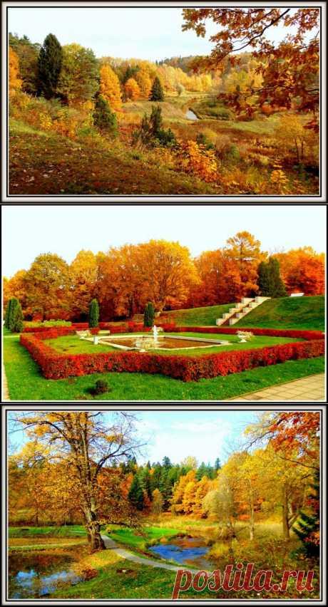 Осень в Тойла Ору. Эстония | Фотоискусство