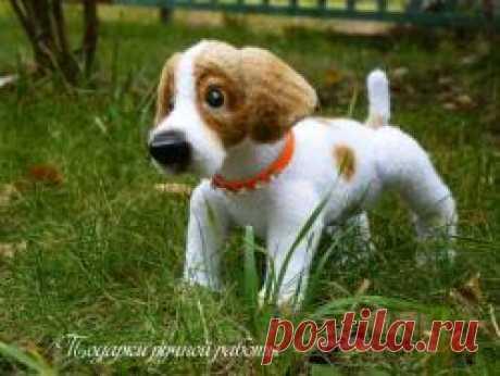Щенок, породы джек рассел терьер - Звери, животные - онлайн - Форум почитателей амигуруми (вязаной игрушки)