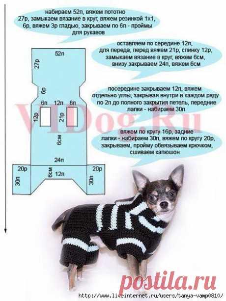 Вязанный комбинезон для собаки