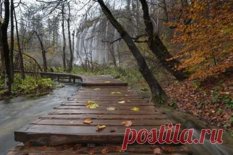 Глубокая осень на Плитвицких озёрах (Хорватия): дорожки покрываются опавшей листвой, а озёра и водопады становятся полноводнее из-за частых дождей. Фотограф – Светлана Горбатых: nat-geo.ru/community/user/29089