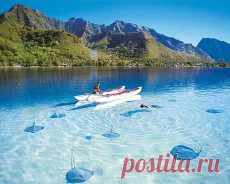 Уникальные места планеты, которые удивят кристально чистой водой В мире есть места, где от прозрачности воды дух захватывает. Хотите ли вы нырнуть или просто часами смотреть на водоём с райского побережья, эта кристально чистая вода вас заворожит. 1. Примоштен, Хорватия 2...