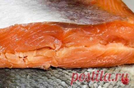 Засолка красной рыбы. Заготовки впрок от Перчинки - Главная