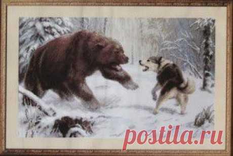 Особенности охоты на белку и медведя | Интересные тексты и факты