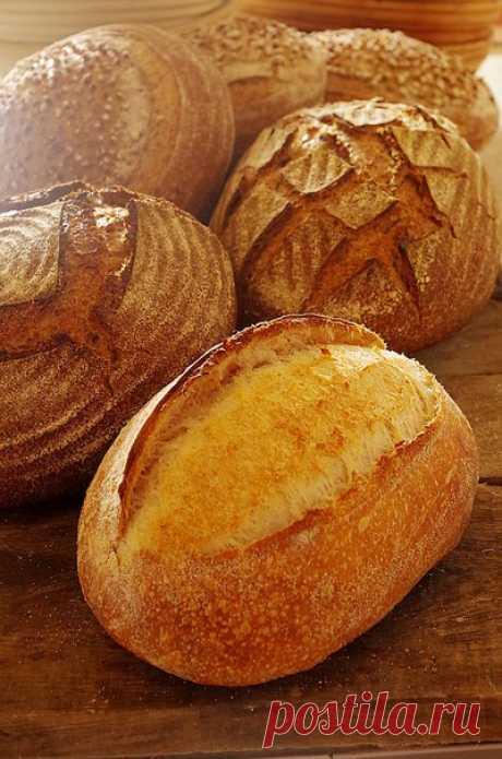 Французская булка - хлеб, который я пеку чаще всего! Представляете, хлеб, который я пеку чаще всего – это не мой любимый пшеничный цельнозерновой, а белая французская булка! А все потому, что ее любит моя мама, она «подсадила» на этот хлеб своих подруже…