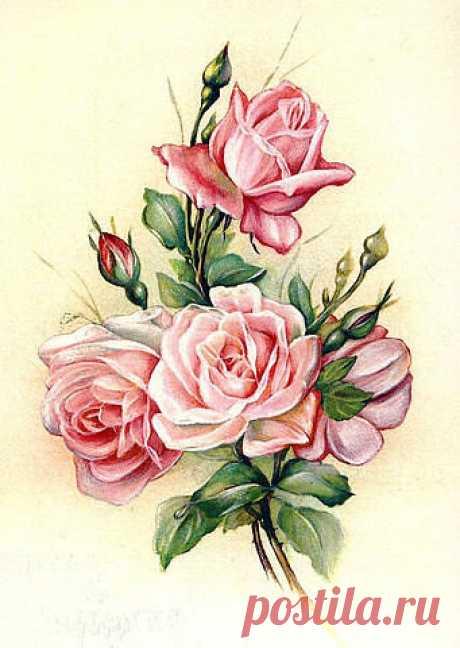 Схема вышивки «роза» - Вышивка крестом