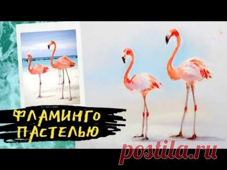 Как нарисовать фламинго пастелью — kalachevaschool.ru — Поэтапный урок Елены Таткиной