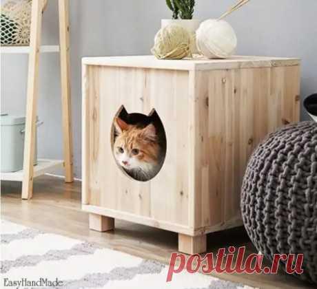 Чем вывести запах от котов или собак из дома - Квартира, дом, дача - медиаплатформа МирТесен