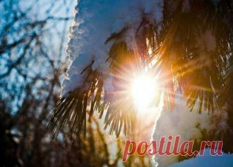Сегодня 21 декабря - День Зимнего Солнцестояния! Сегодня самый короткий день в году
