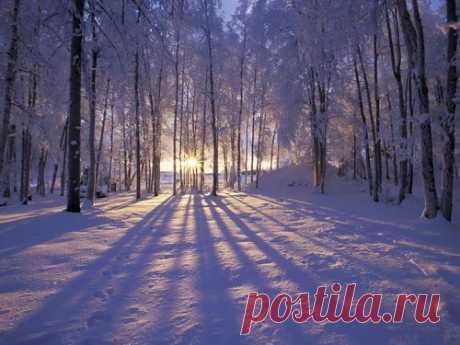 Зимние народные приметы Благодаря зимним народным приметам выможете узнать, каким будет текущий год. Как можно чаще обращайте внимание наподсказки судьбы, итогда жизнь для вас станет намного легче.