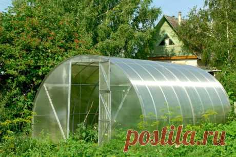 Теплицы купить от производителя с подарком | Теплицы под поликарбонат, под пленку, готовые и на заказ. Большой выбор теплиц. дачные, зимние, фермерские, промышленные