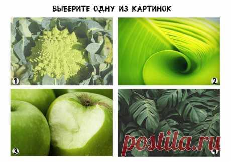 Быстрый тест личности: выберете оттенок зеленого цвета