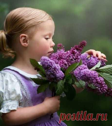Умение находить радость в жизни - лучший способ привлечь счастье.