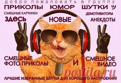 ПРИКОЛЫ ЮМОР ШУТКИ ツ группа фейсбук