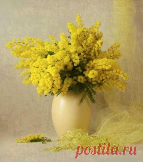 Весну сначала чувствуют и лишь потом - видят...  © Лиля Град