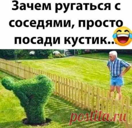 Посади кустик!!!!!!!!!!