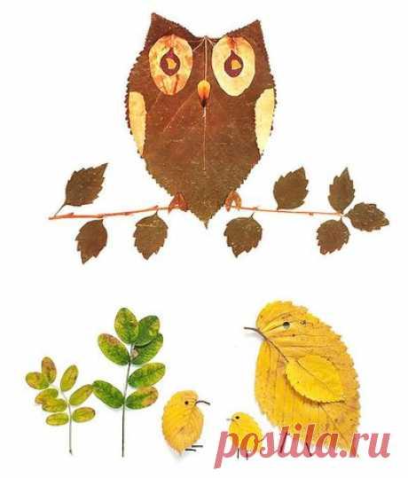 Сохраняем красоту осенних листьев. Что же с ними делать? - SPACE GIRAFFE — LiveJournal