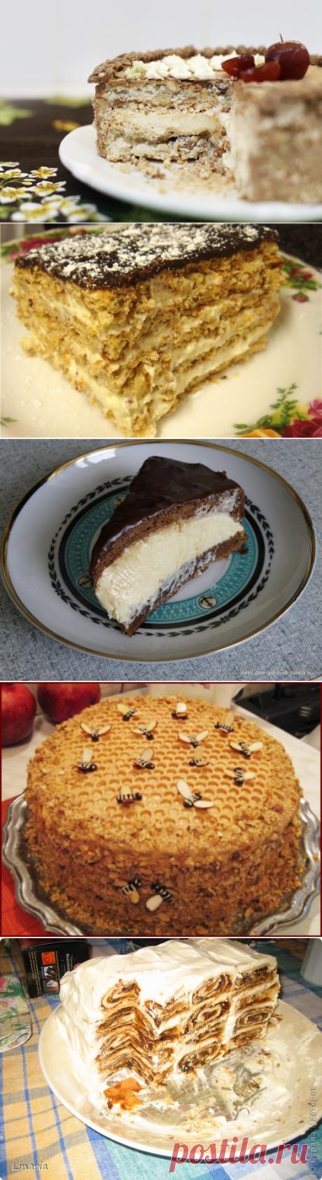 Почти два десятка вкуснейших тортов - выбирайте!