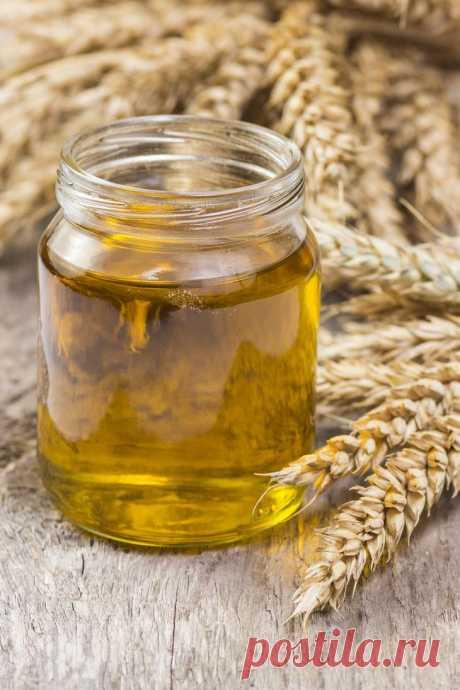 Супер-полезное масло зародышей пшеницы — Свойства и применение