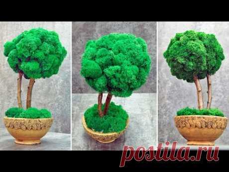 Обалденный декор для дома, миниатюрное дерево (бонсай) своими руками