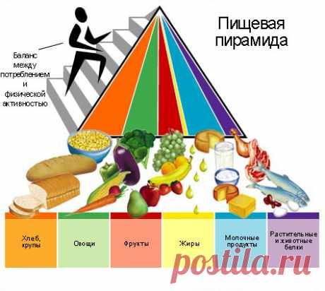Работа кишечника, как критерий здоровья - ГКБ Кончаловского