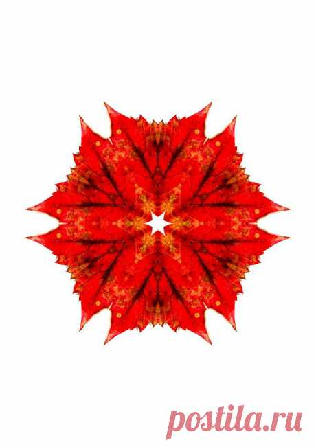 Осенняя мандала -  Red Patterned Kaleidoscope  Free Stock Photo HD - Public Domain Pictures