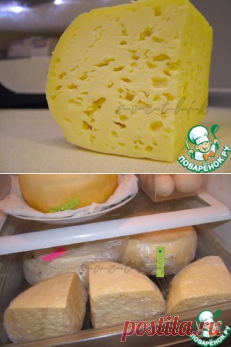 Домашний твердый сыр - кулинарный рецепт