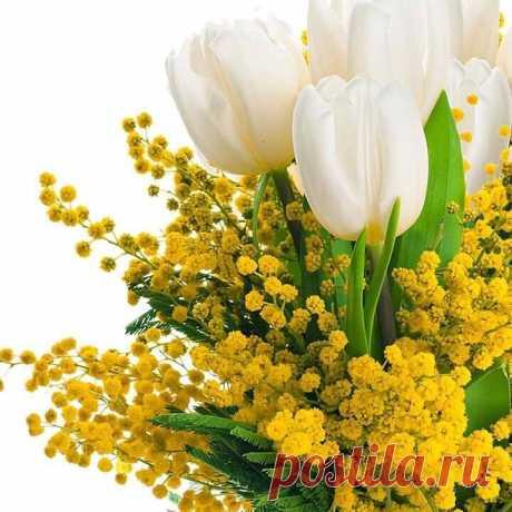Как драгоценный дар от Бога – Тот день, в котором мы живём... Пусть будет радостной дорога И счастье ваш наполнит дом. Хорошего воскресного дня и прекрасного настроения!