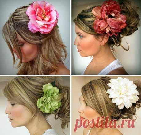 цветы в волосах: 244 тыс изображений найдено в Яндекс.Картинках