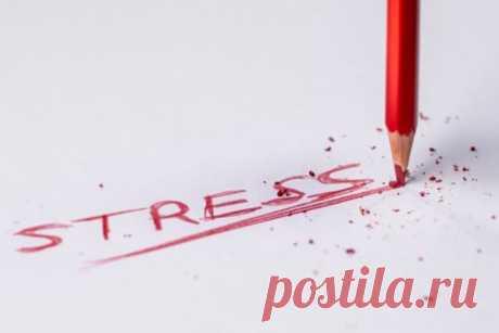 Можно ли заразиться стрессом?   CityWomanCafe.com