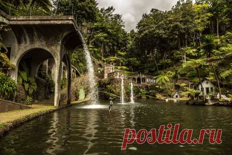 Тропический сад на острове Мадейра (Португалия)
