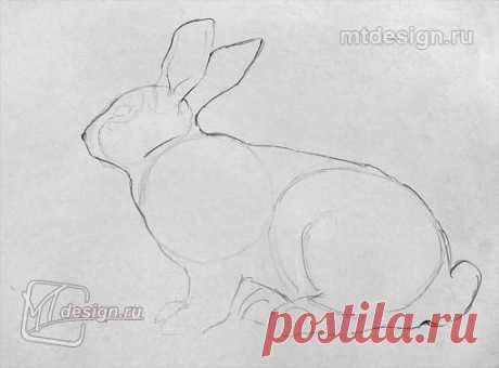 Рисуем зайца в несколько штрихов и в пару мазков — Сделай сам, идеи для творчества - DIY Ideas