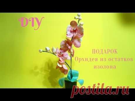 Орхидея из остатков изолона.Подарок своими руками.Бесплатный МК - YouTube