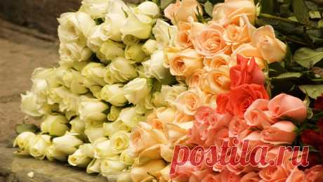 nastol.com.ua-11008.jpg (1600×900)