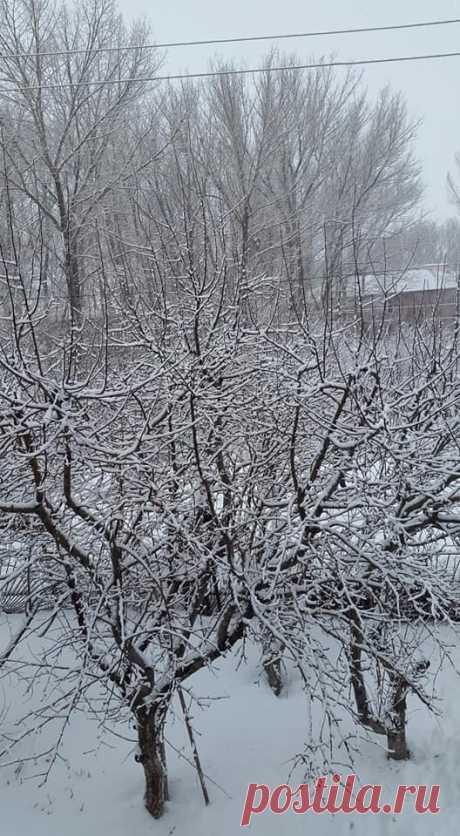 Ապարանն այսօր `վաղ առավոտյան❄🌁 Գարնանամուտին Ապարան աշխարհից չհեռացած ձմեռը դարձյալ վերադարձավ իր ողջ ծավալով,առատ ձյան տեղումով....միևնույն է գարնան շունչը օդում կախված է ու իր մասին ահազանգում է անգամ մեր լեռնաշխարհում: